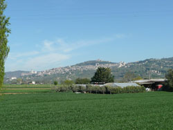 Evropské setkání noviců apostnoviců minoritského řádu, Assisi – La Verna (10.-14.4.2012)
