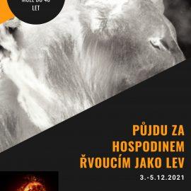 Obnova uminoritů v Brně
